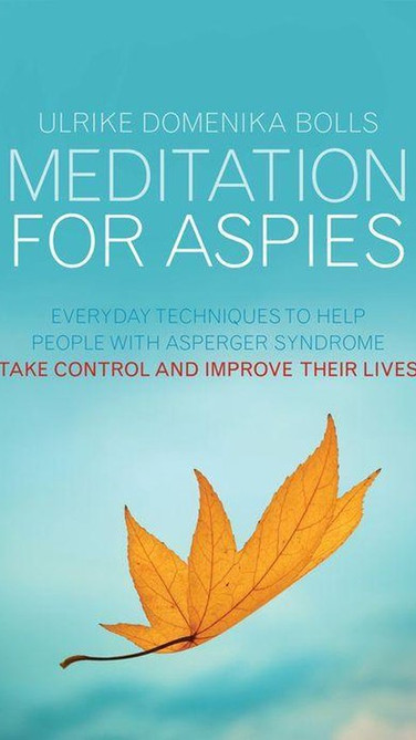 Mediation for Aspies