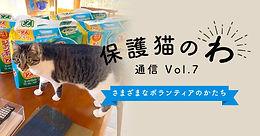 icatch_hogoneko07.jpg