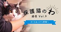 icatch_hogoneko09.jpg