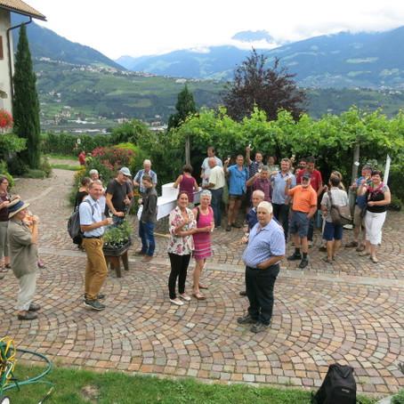 PIWI international Treffen im Südtirol