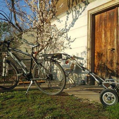 Grün liefern – mit dem Fahrrad!