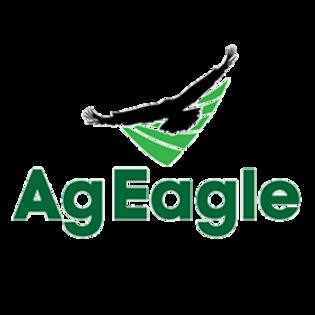 AgEagle Logo