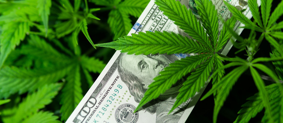 Cashing In on the Budding U.S. Hemp Growing Market