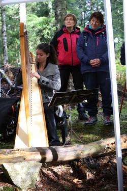 Balade en forêt (447)