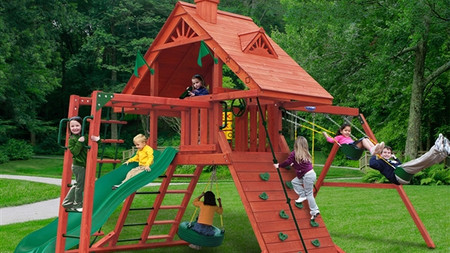 Dane's Den w/ Monkey Bars $2,299