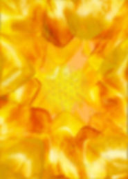 A_la_Lumière_des_Energies_de_Vie_-_Dos.j
