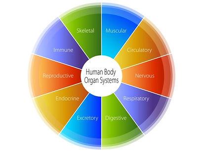 functional-health.jpg