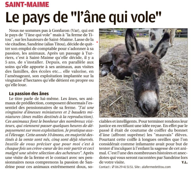 article alfdt provence 5.png