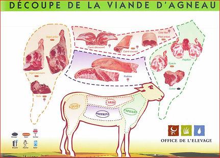 schema-decoupe-viande-agneau.jpg