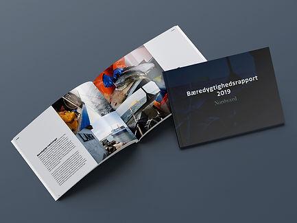 Baeredygtighedsrapport 2019 Mockup Dansk