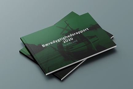 Sustainability Report 2020 DK.jpg