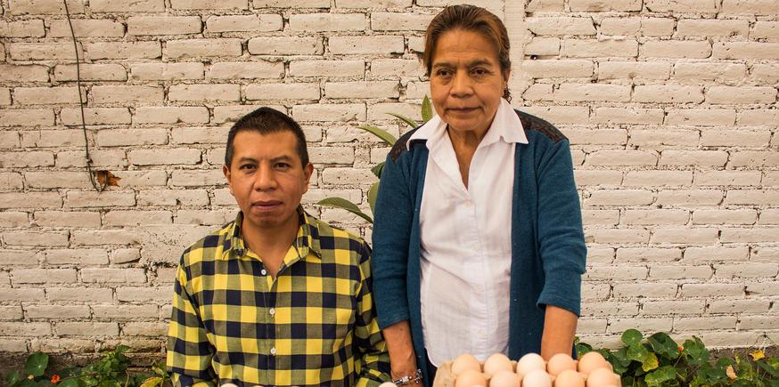 Productores de Huevo