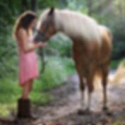 beautiful-daylight-equestrian-1090408 (1