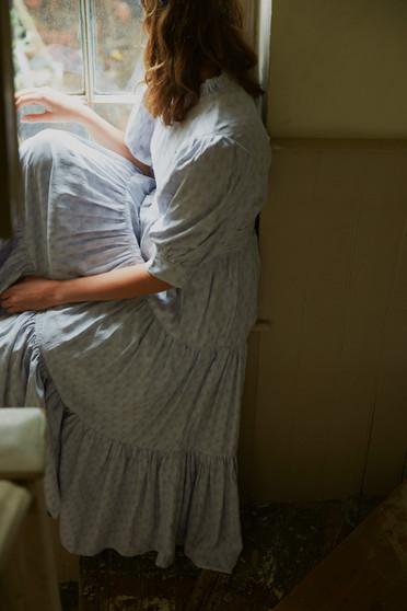 Novel Expectations   Sister Jane