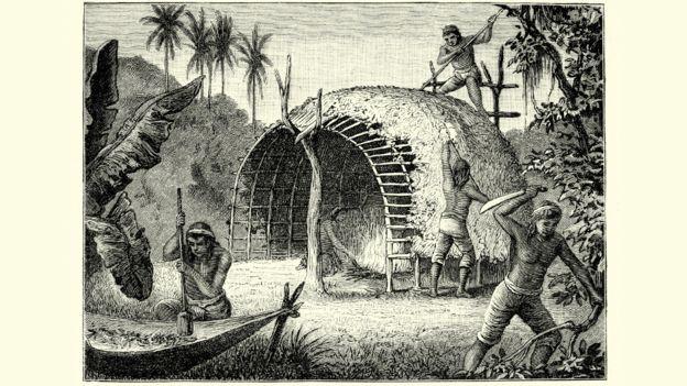 Grabado de fines del siglo XVIII que retrata indígenas paraguayos cosechando y secando yerba mate, cuyo nombre científico es Ilex paraguariensis.