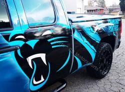 Carolina Panthers VISA Truck