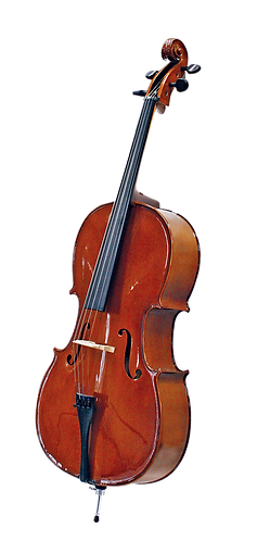 Cello - STENTOR Student 1