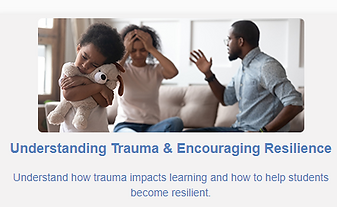 Trauma and Resiliency Course.PNG