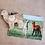 Thumbnail: Alpaca Mandala Magnet