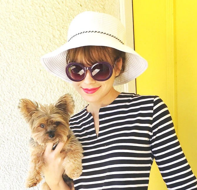 Small dog, larger hat