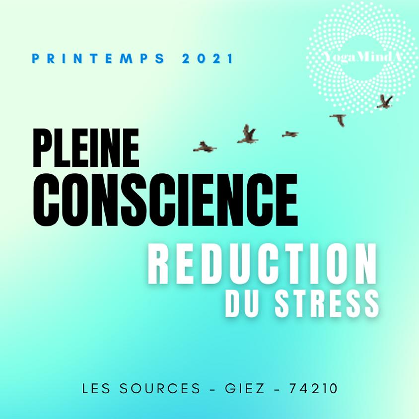 PLEINE CONSCIENCE : Programme 8 semaines Printemps 2021