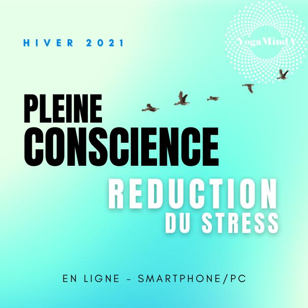 PLEINE CONSCIENCE : Programme EN LIGNE
