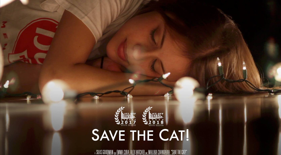 save the cat award.jpg