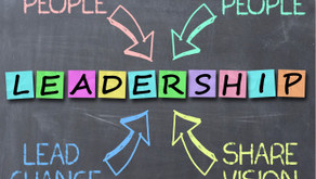 Professional Leadership Series