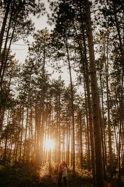 woodland sunset maternity session