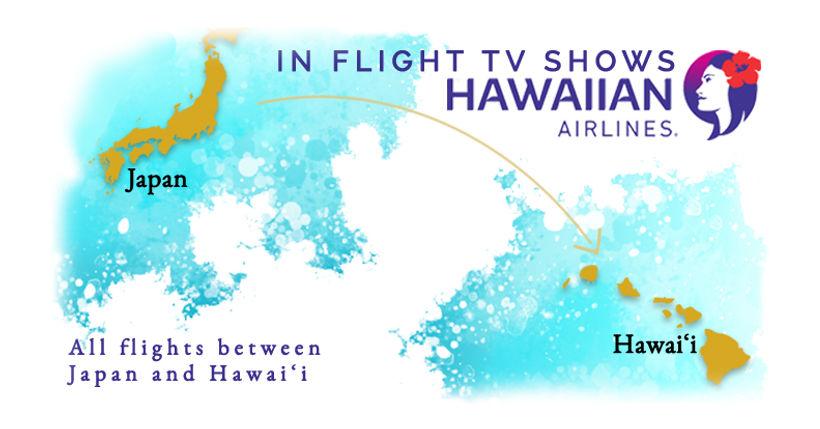 Hawaiian Arilines.jpg
