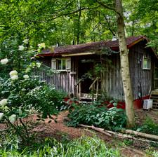 Namaste Cabin