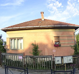 0339 (2).JPG