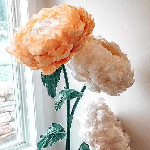 Bouquet Rental