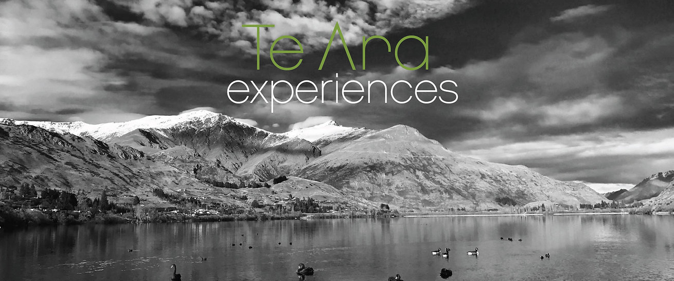 TeAra-logo2.jpg