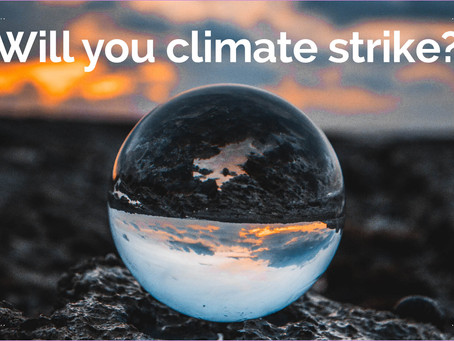 Will you climate strike?