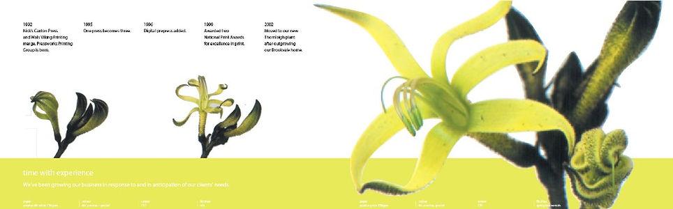PW100-brochure-timeline_edited.jpg