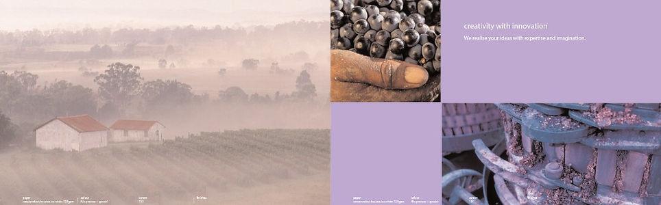 PW100-brochure-wine_edited.jpg