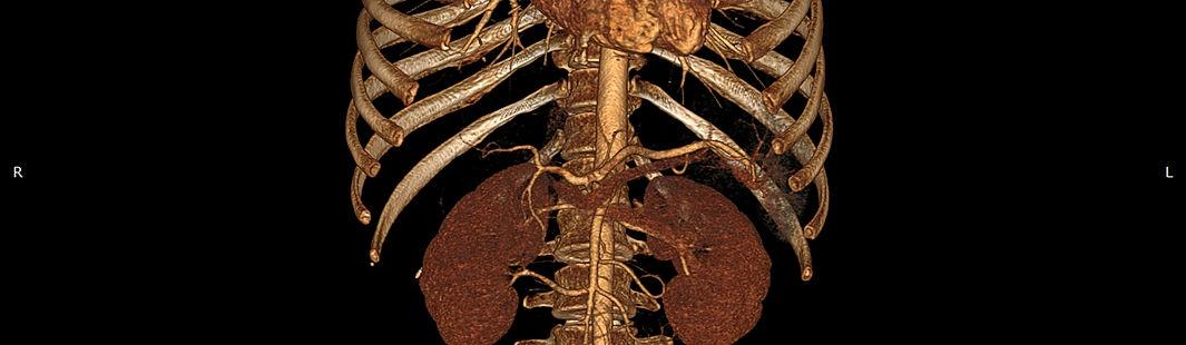 MRI Image Medical.jpg