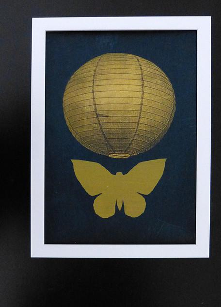 Light and moth