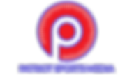Patriot Sports Media Logo