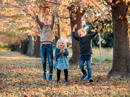 Autumn & Winter Photography Sessions and Why You Should Book Them