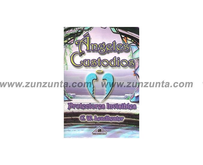 """Libro """"Ángeles custodios protectores invisibles"""""""
