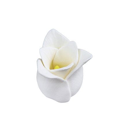O'Creme Gumpaste Tulips, White - 6 pieces