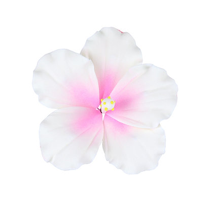 White with Pink Spray Hibiscus Gumpaste Flowers - Set of 3