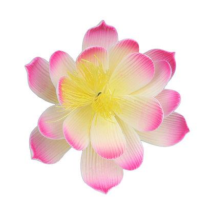 O'Creme Pink Waterlily Gumpaste Flowers - Set of 3