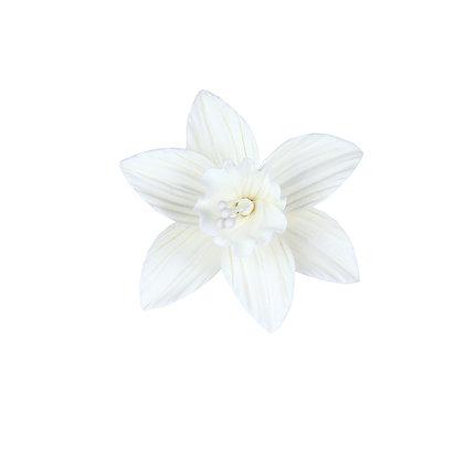 White Daffodil Gumpaste Flowers - Set of 6