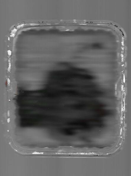paint scan 2.jpg