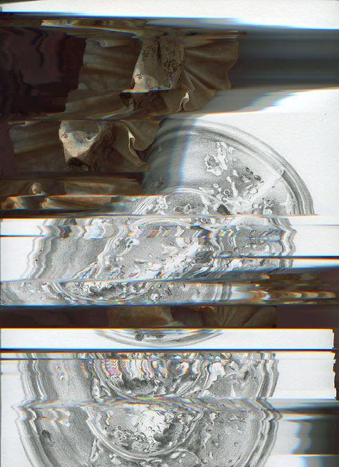 Warpe1-min.jpg