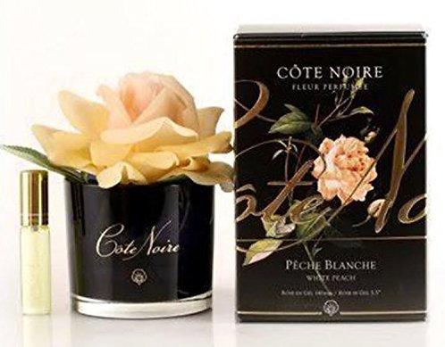 Cote Noire White Peach Perfumed Rose Diffuser