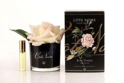 Cote Noire Pink Blush Perfumed Rose Diffuser